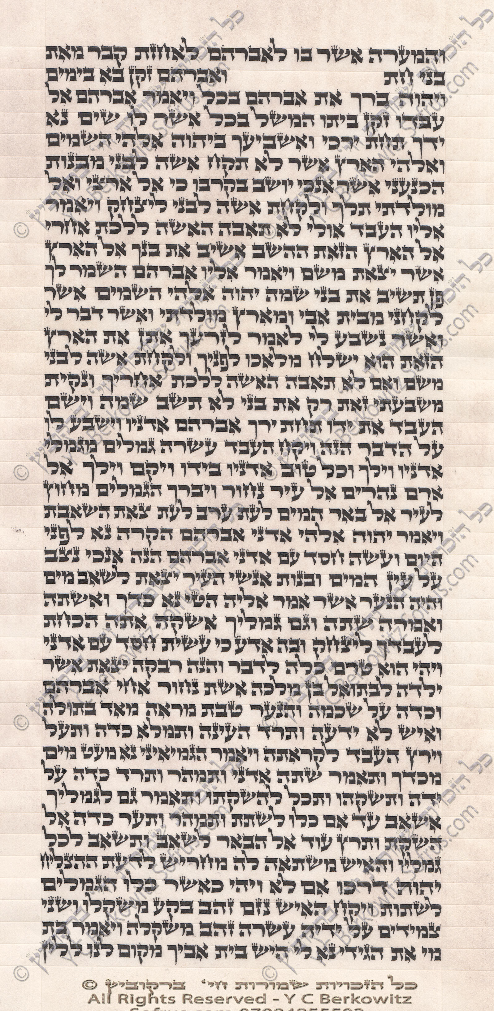 sefer-torah-24-ChayeiSoroh