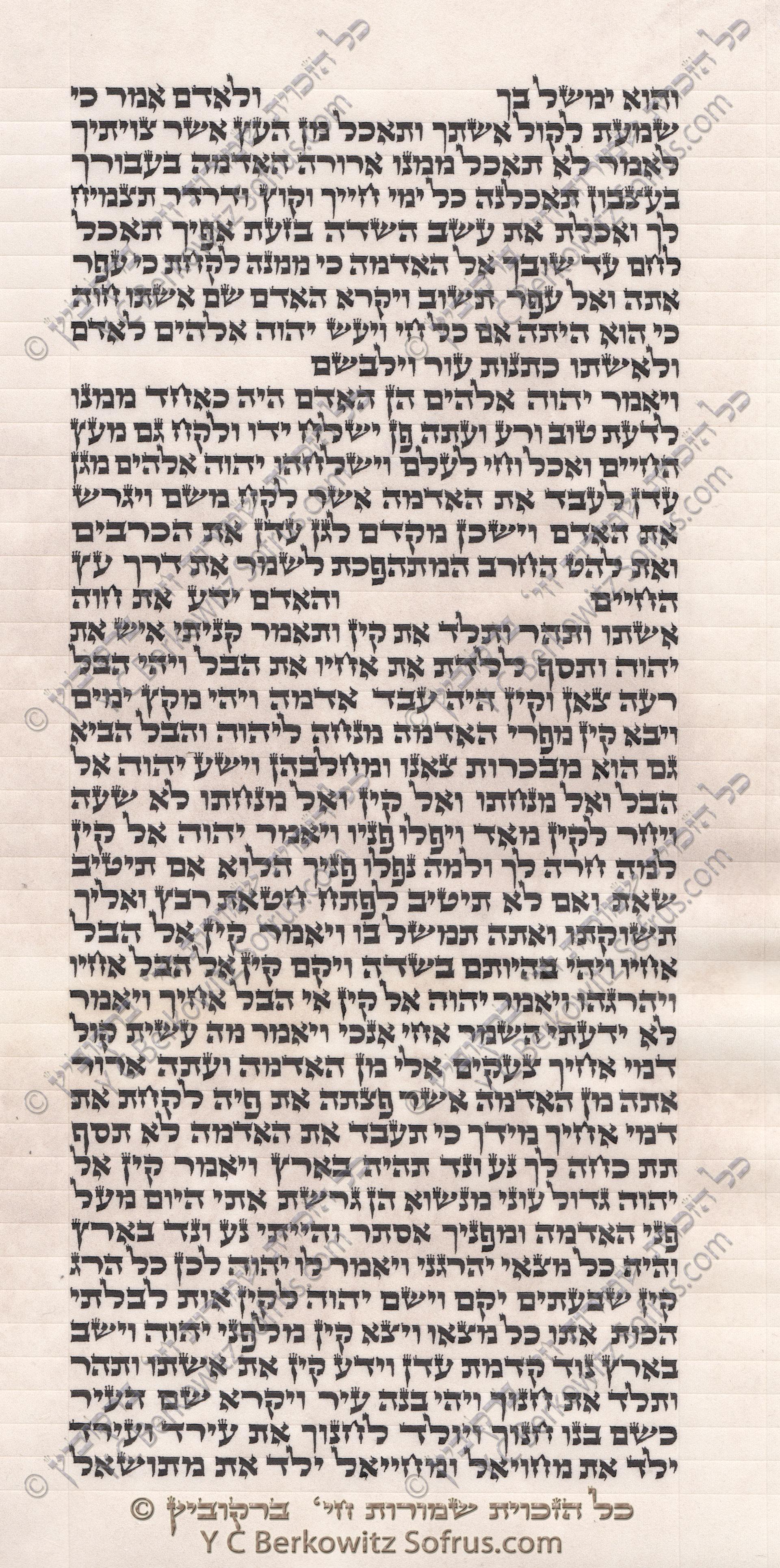 sefer-torah-bereshit-4