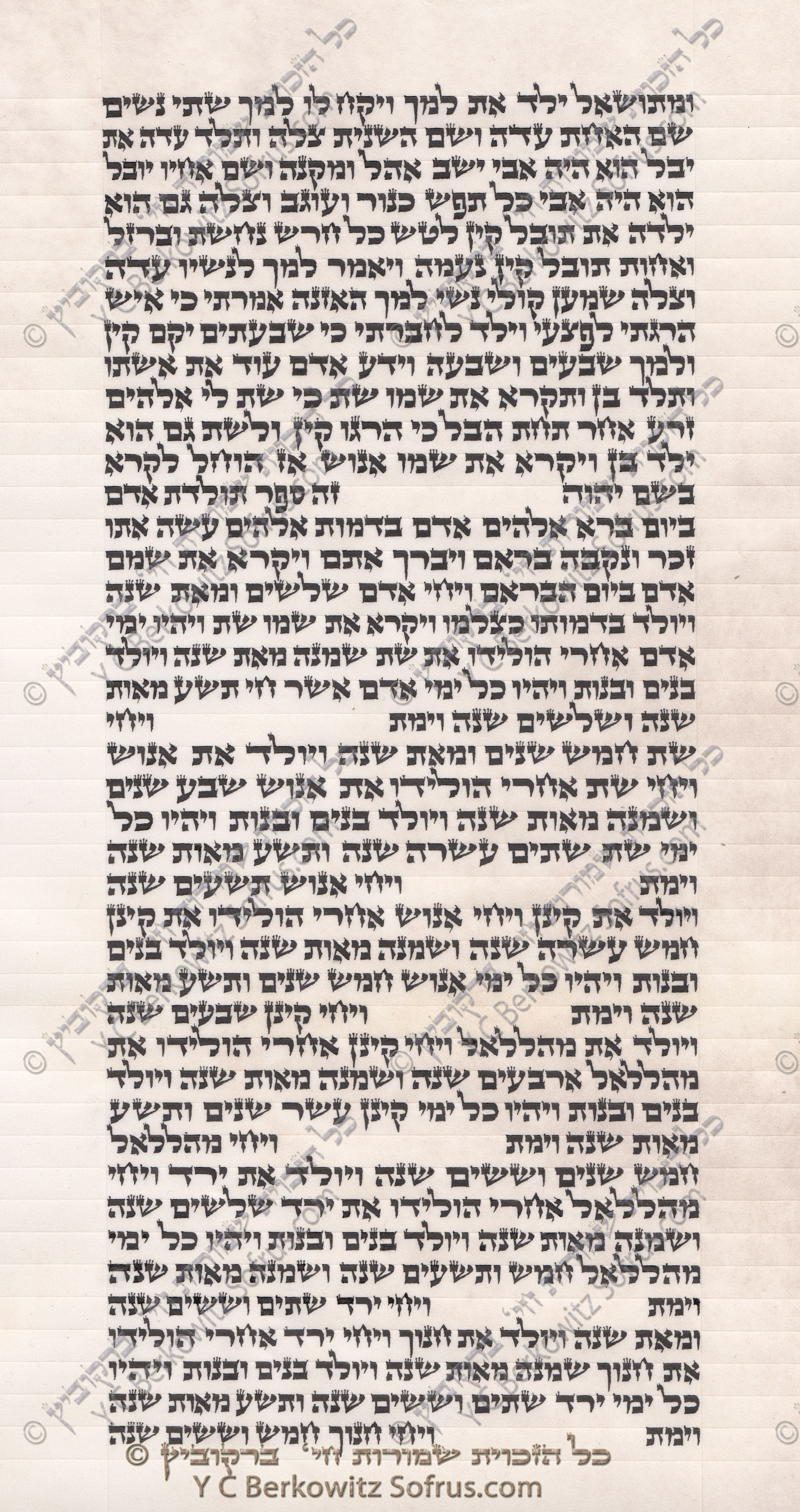 sefer-torah-bereshit-5