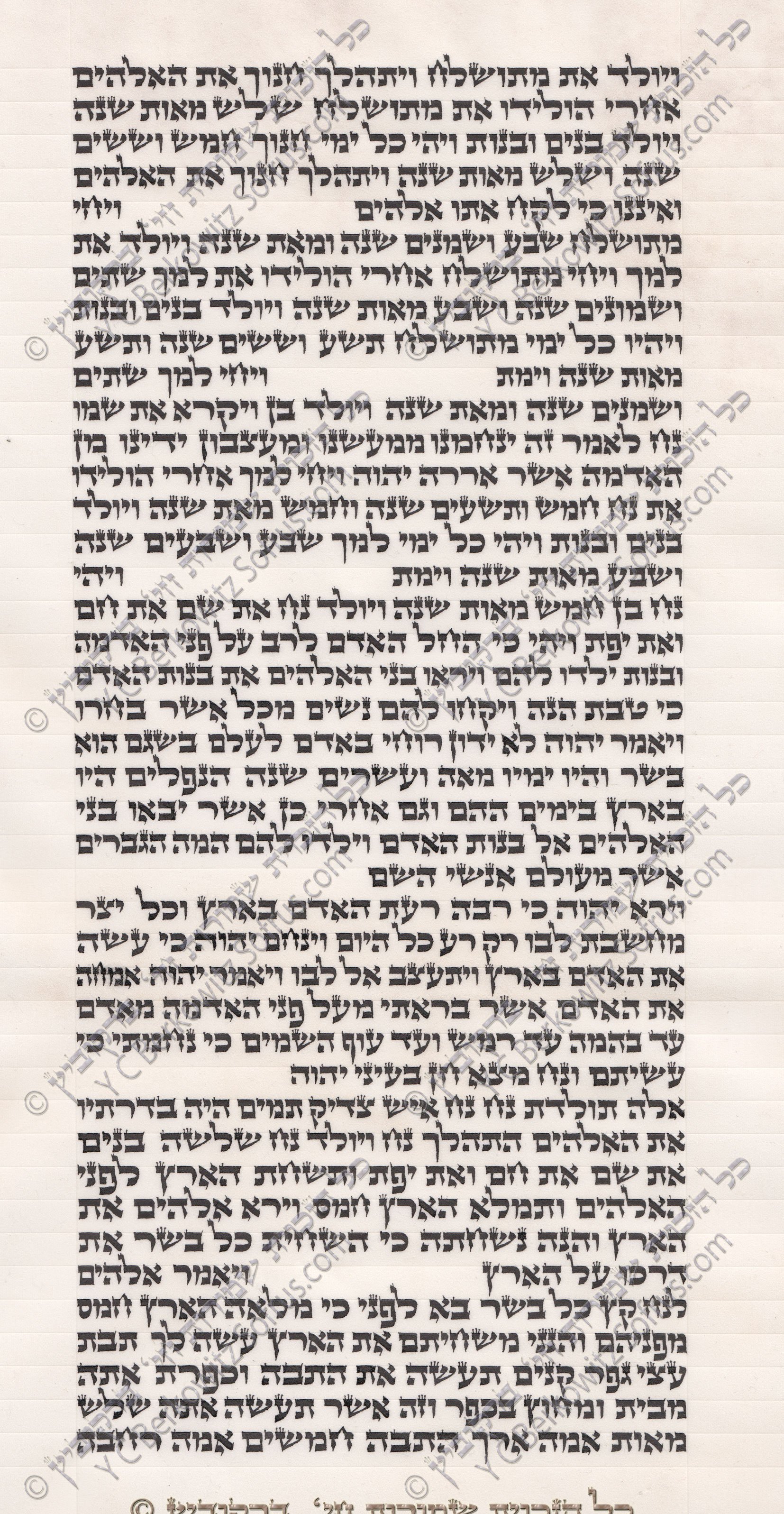 sefer-torah-bereshit-6